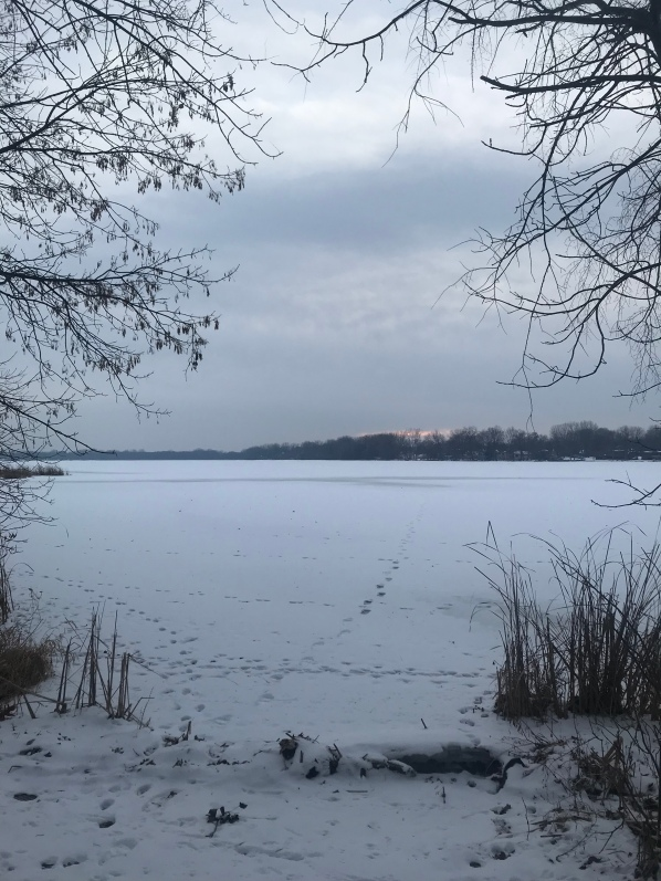 Frozen winter lake view