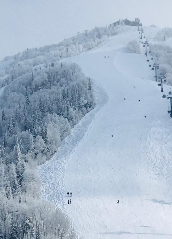 Steamboat Resort, ski slopes, Steamboat, ski trail, black diamond ski